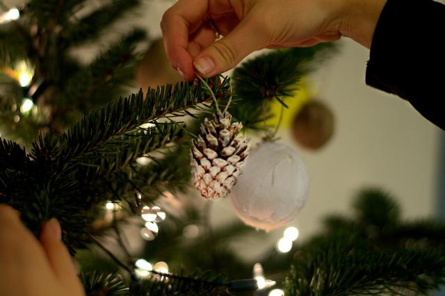 Hang eens andere versiering in je kerstboom! Dennenappels bijvoorbeeld. :)