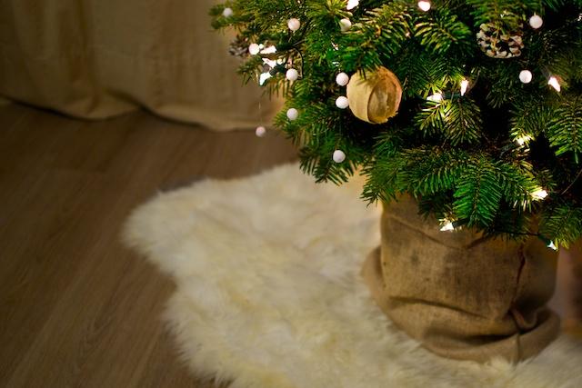 Decoreer je boom met zelfgemaakte decoratie!