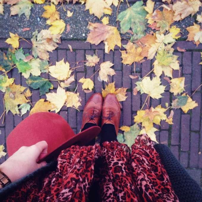 Snapshots november #1 (1)
