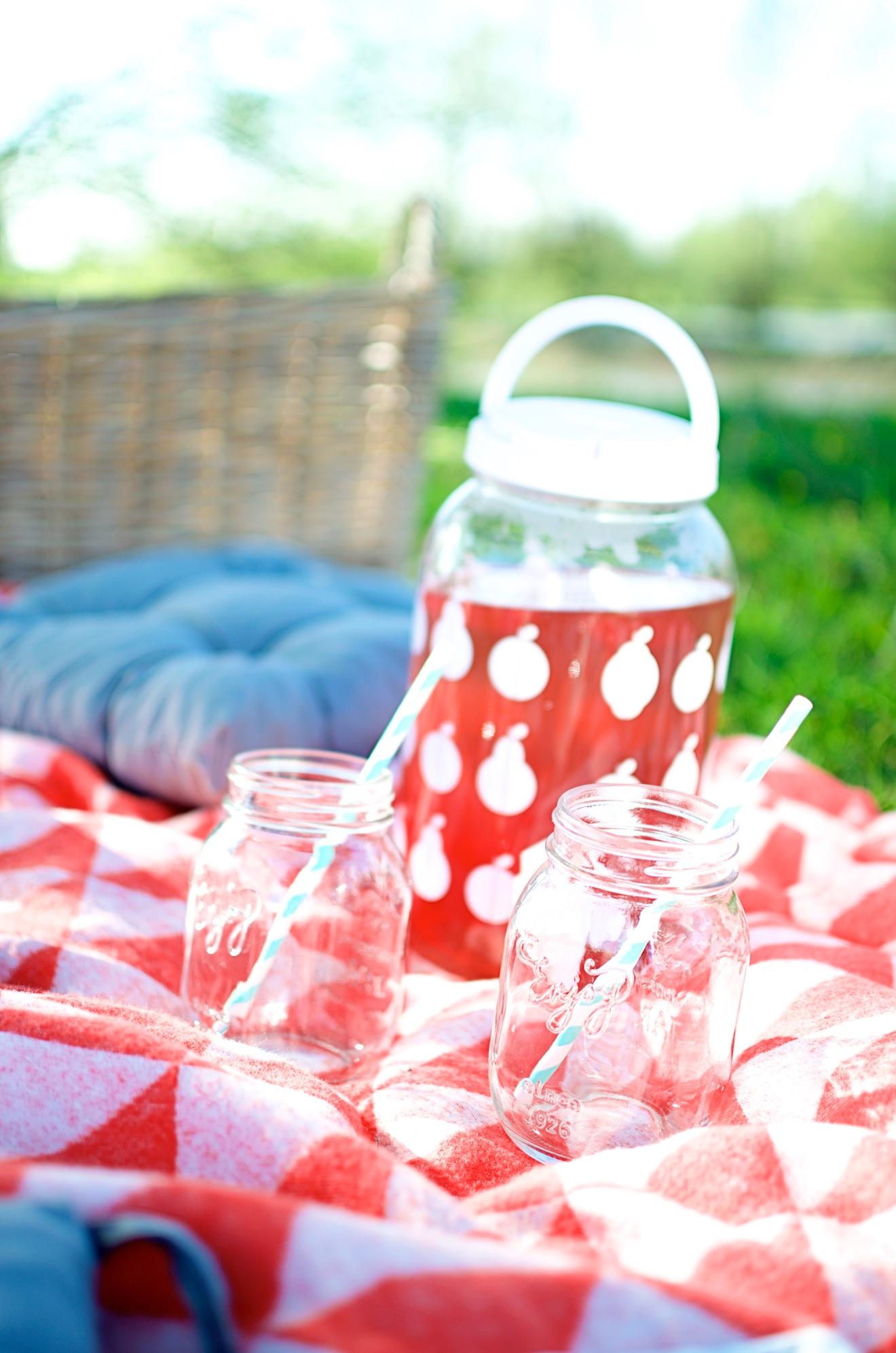 Zo organiseer je een picknick (6)