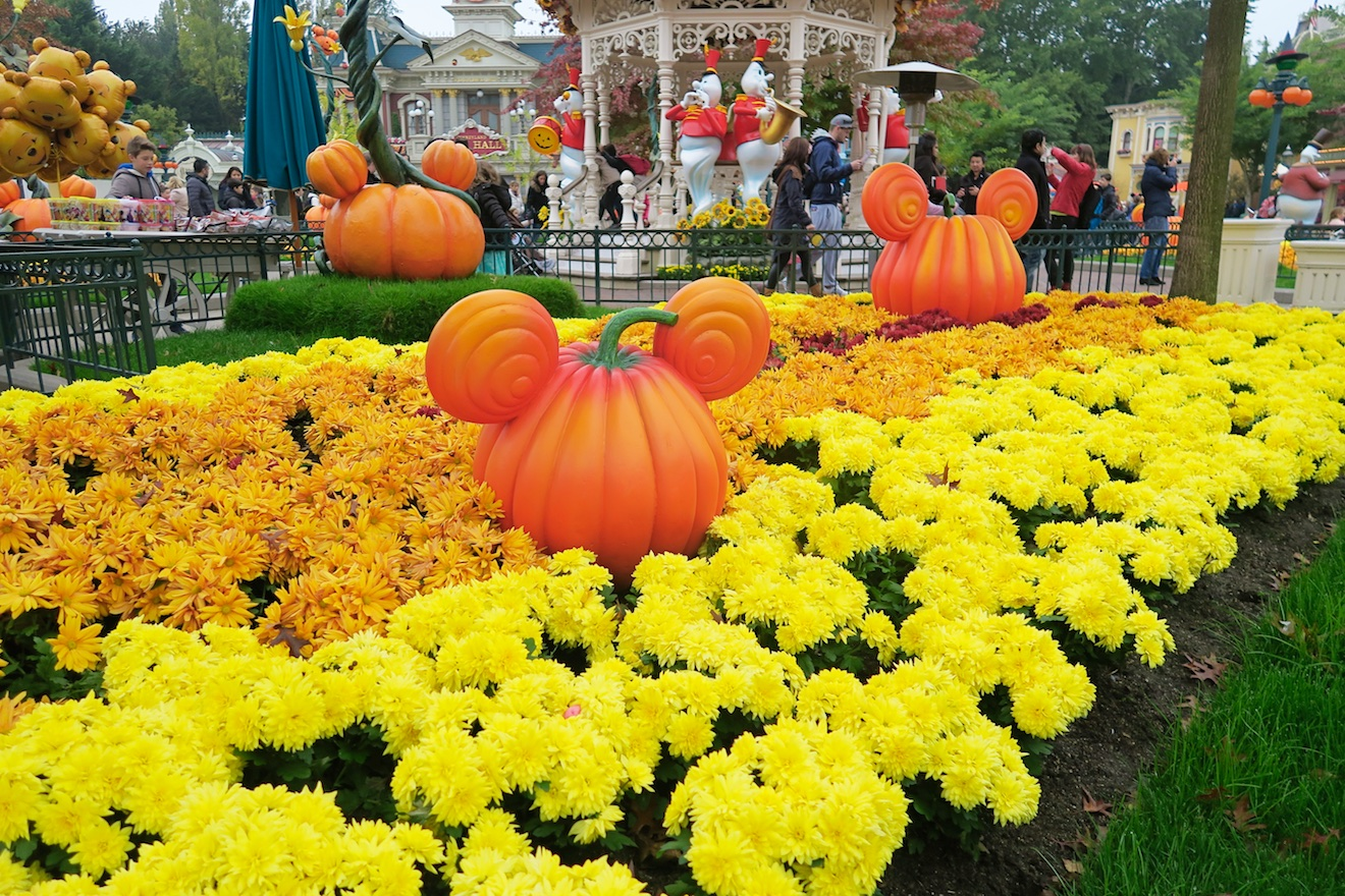 Disneyland persreis Shifra 1 (2)