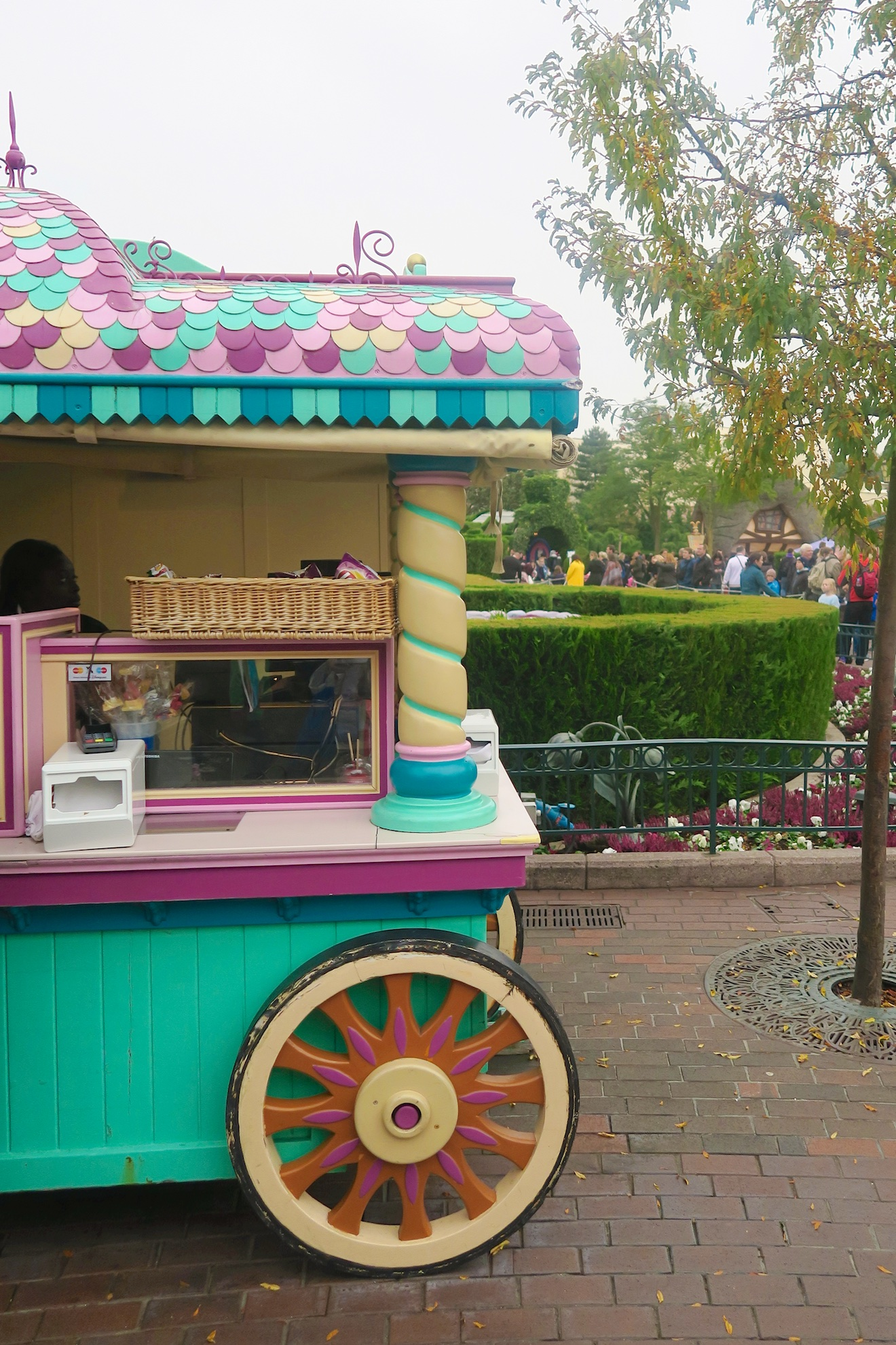 Disneyland persreis Shifra (14)