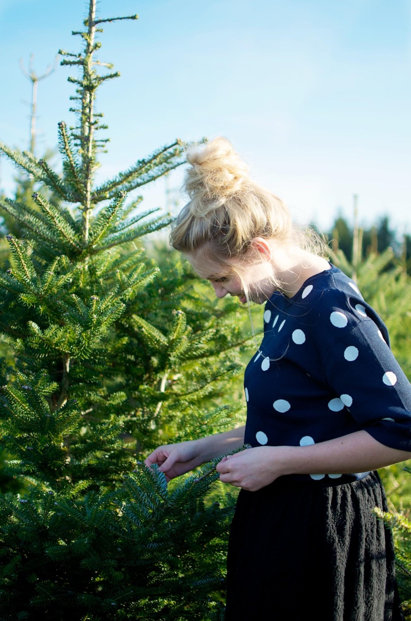 Gids-om-de-perfecte-kerstboom-uit-te-kiezen-9-2