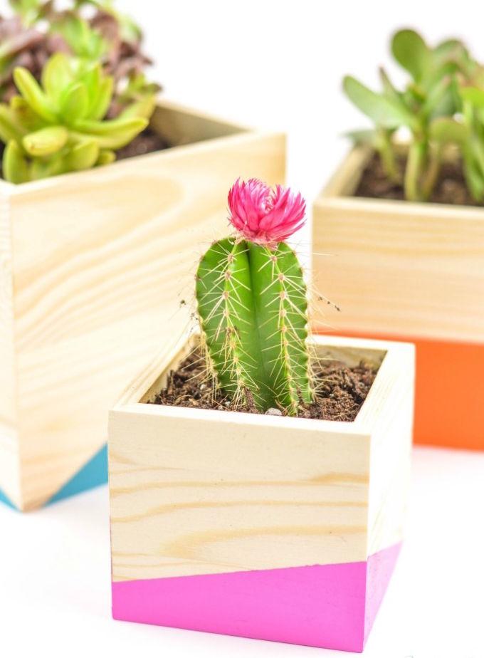 DIY-Color-Block-Wood-Planter2