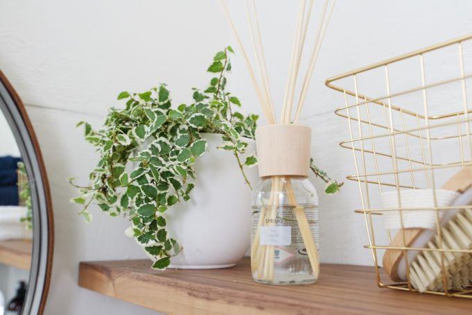 Badkamer Plant : ... in de badkamer. (Als dat logisch klinkt?) Dus er ...