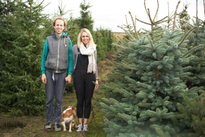 kerstboom-kopen-op-een-kerstbomenboerderij-1