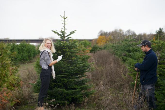 kerstboom-kopen-op-een-kerstbomenboerderij-8