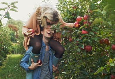 Date idee: appels plukken