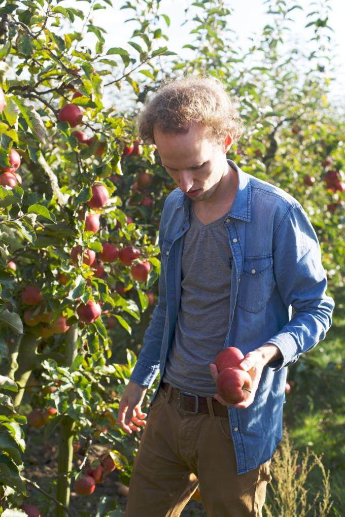 Originele date idee: appels plukken