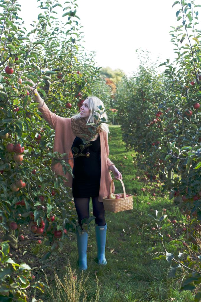 appels-plukken-7