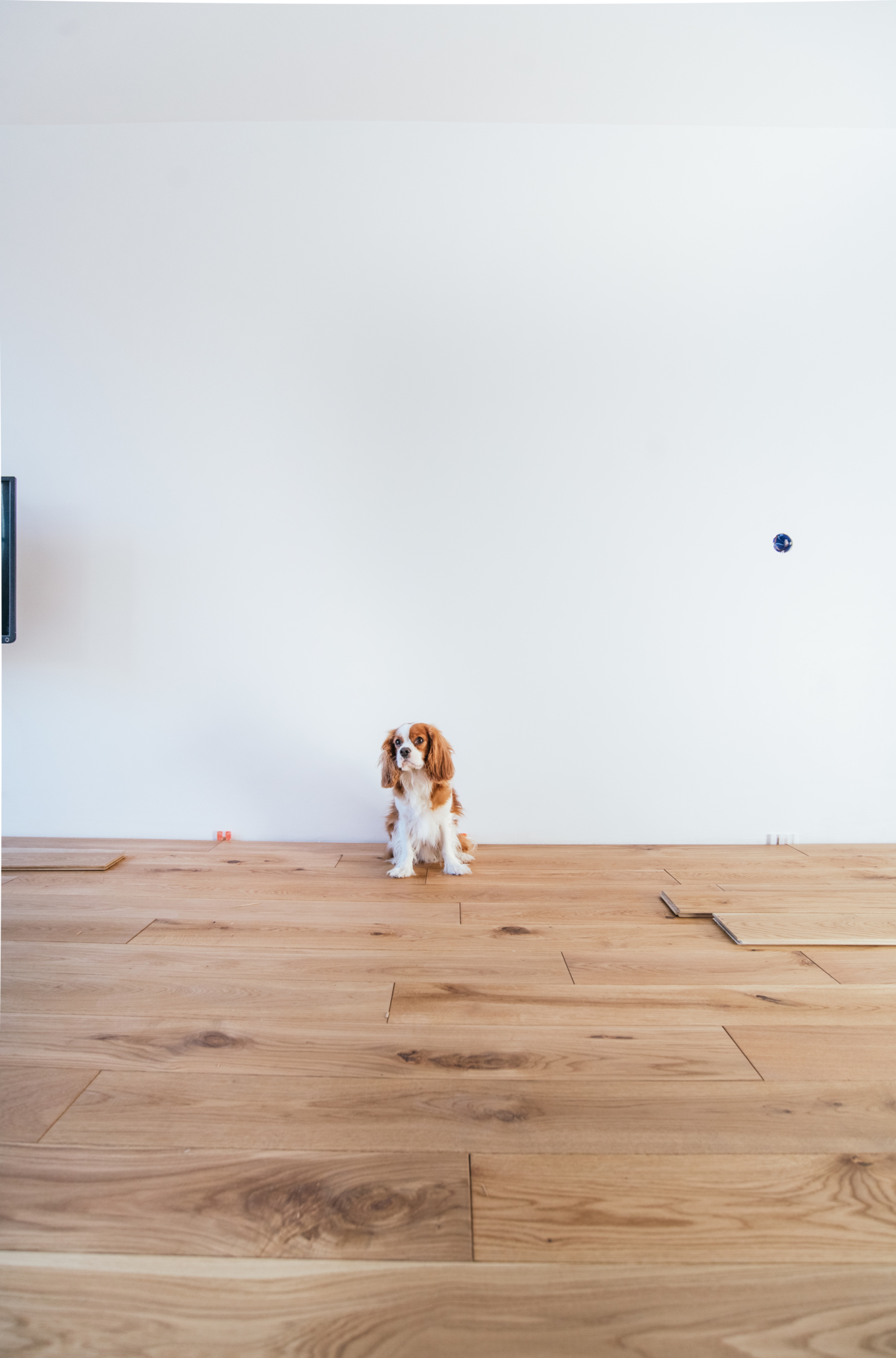 hoe houten vloer leggen-1-11