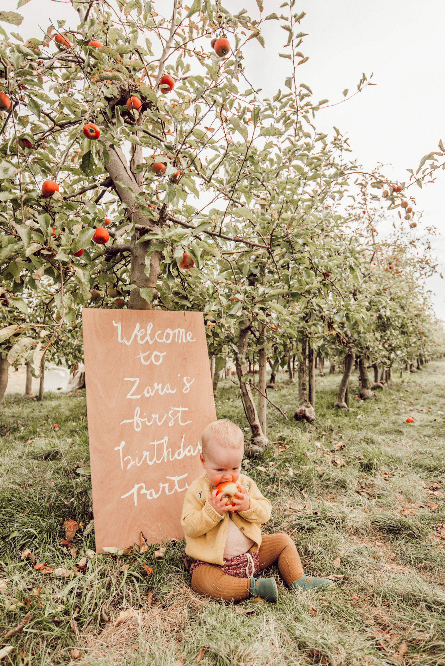 eerste verjaardag appels plukken