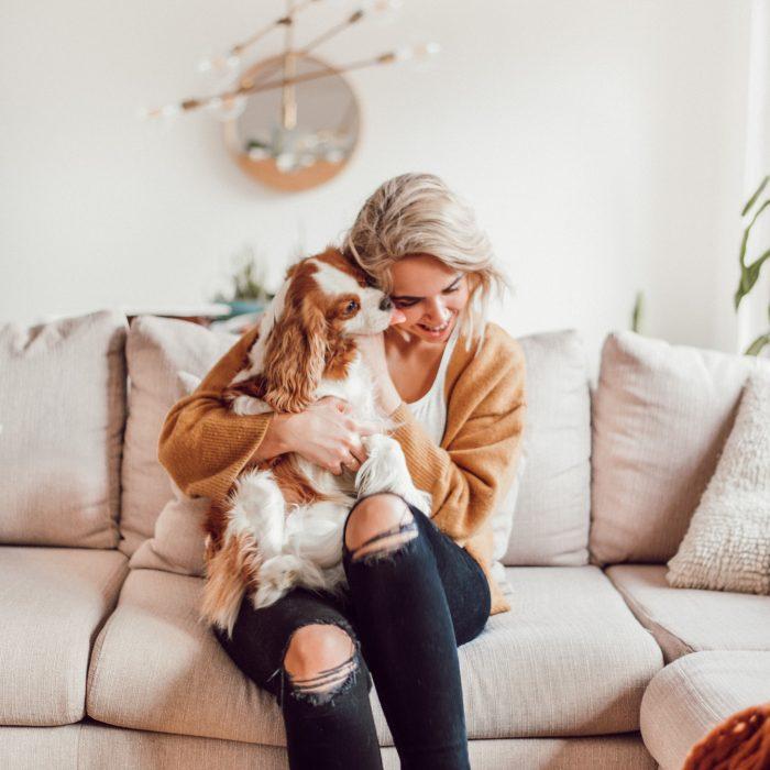 Hoe houden we ons huis schoon met een hond? (+ video!)