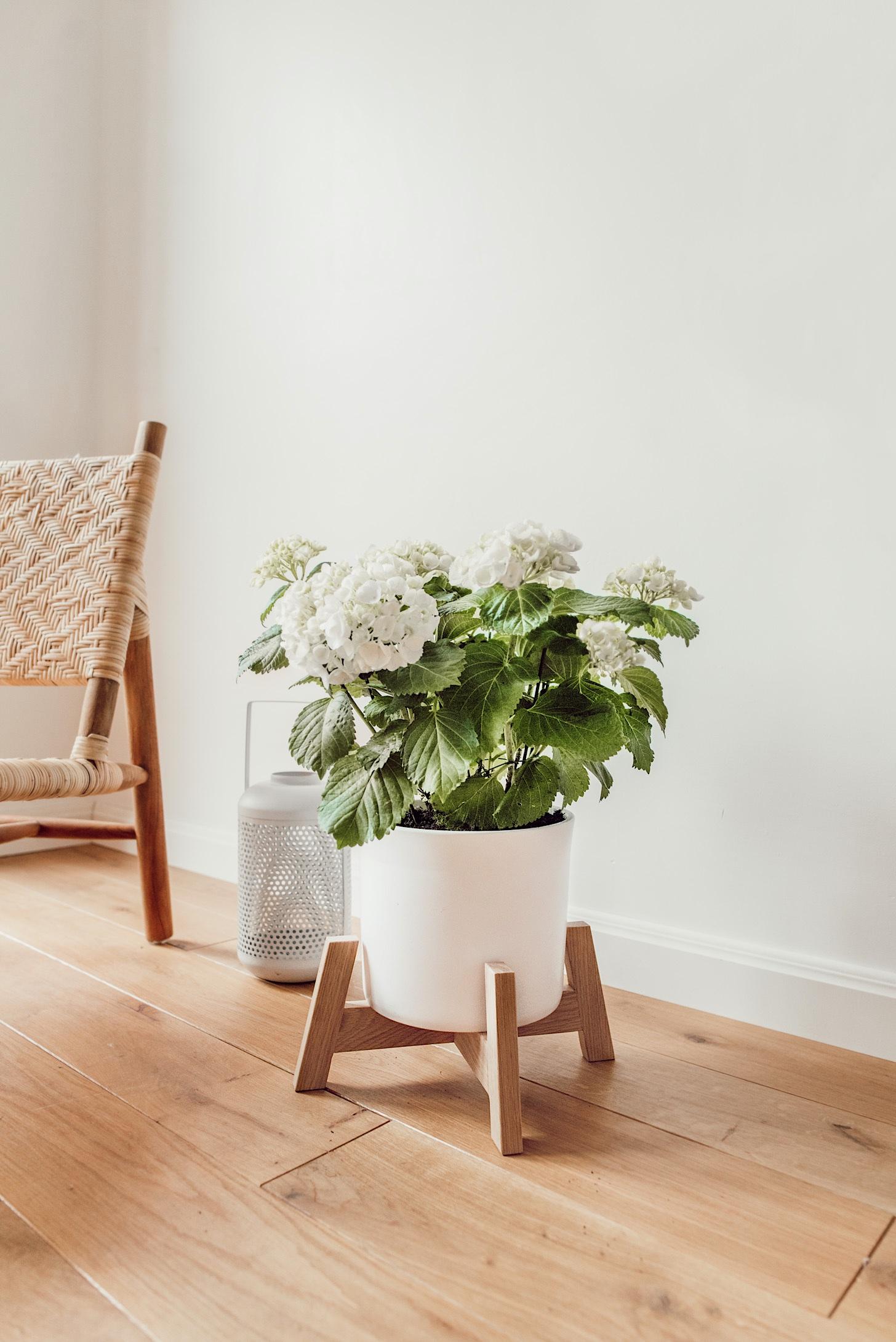 Plantenstandaard DIY zelf maken a cup of life (1)